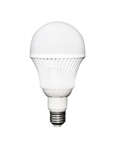12W LED Energy Saving Light Bulb, 12V - 24V DC