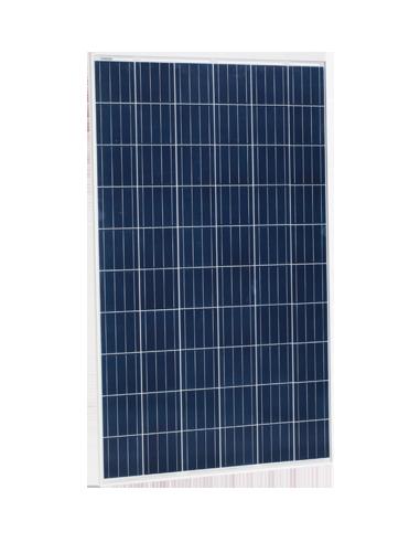 Jinko Maxim Solar PV Module 270 Wp